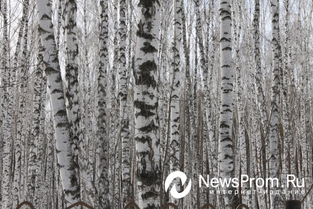 Прогноз погоды на выходные newsprom ru