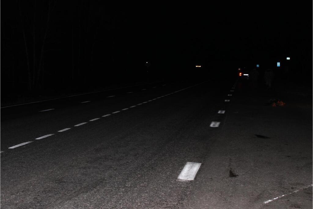 Нанеосвещенных участках задва дня погибли двое пешеходов— Темнота убивает