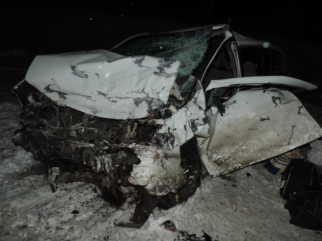 Три автомобиля столкнулись вовремя метели натрассе Тюмень— Ханты-Мансийск
