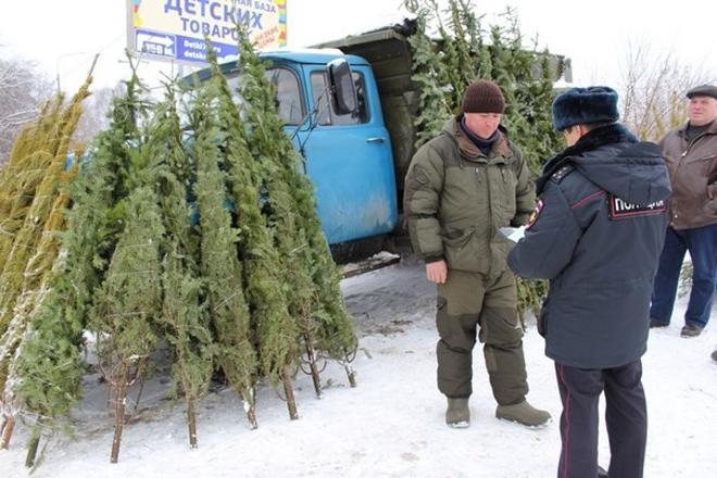 Ульяновск новости последние новости на сегодня
