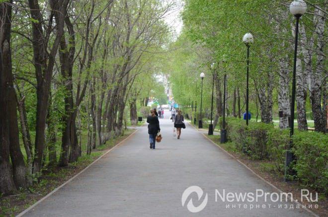 ВКурской области клещи покусали неменее 140 человек
