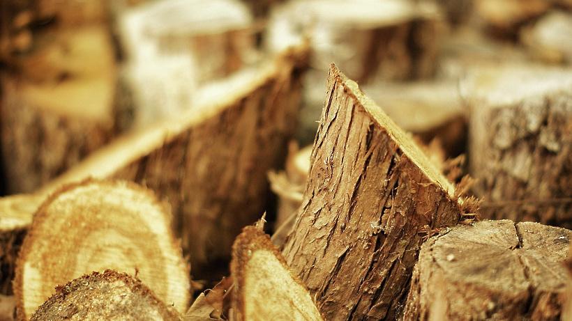 лесной рынок фото