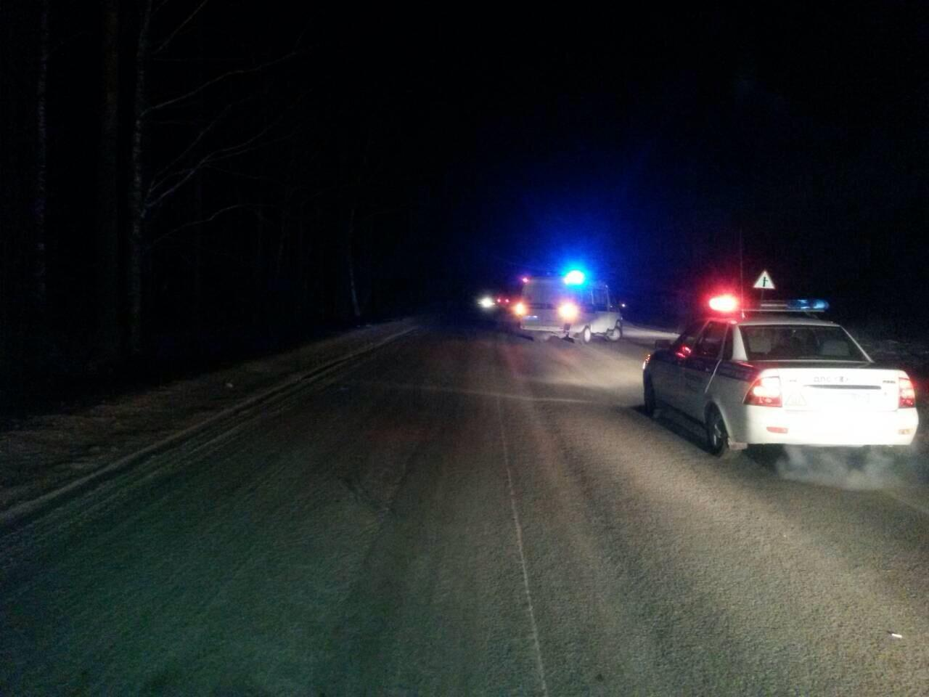 Сводка ДТП: надороге уЗаводоуковска умер пешеход
