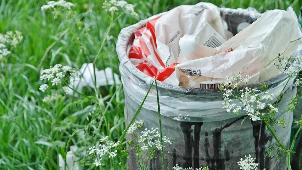 Этим летом тюменцы мусорят больше
