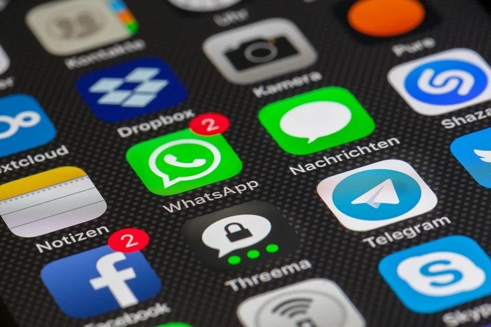В Тобольске разработали телеграм-бот с рекомендациями по выбору профессии