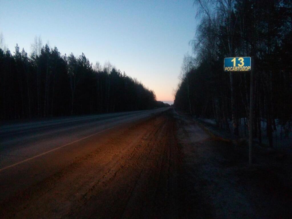 ВТюменской области 3 пешехода попали под колеса