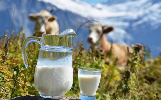 Соски дающие молоко
