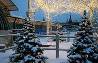 Новогодние площадки Сургута засияли всеми цветами радуги
